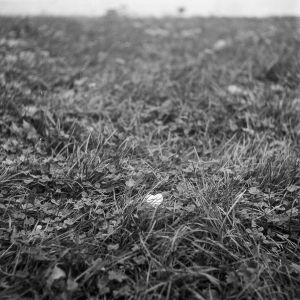 Martin JAnosek Aliens Fotoskola Brno 04